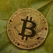 Bitcoin mønt